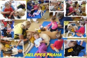 Návštěva a ukázka výcviku asistenčních psů organizace Helppes z Prahy